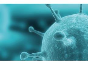 Viral RNA Isolation Kit